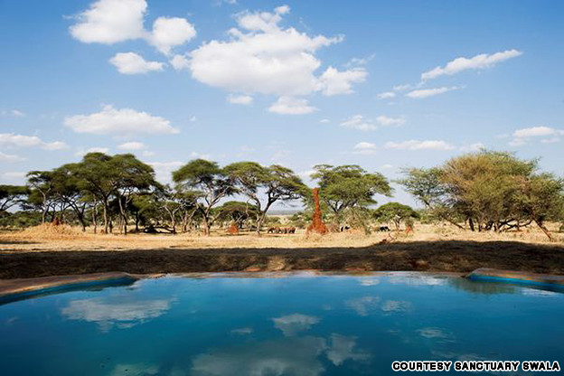 15-Amazing-Pools-sanctuary-swala-waterhole-tanzania-africa