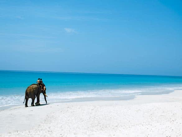 stackliving-perfect-honeymoon-destinations-04-Elephant-Havelock-Island